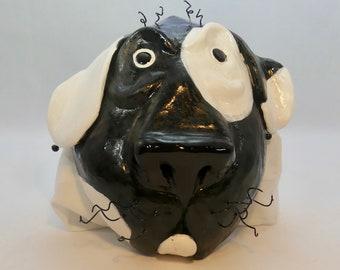 Black & White Spotted Dog