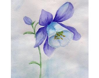 Watercolor drawing Bellflower