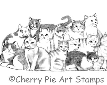 Group of CATS - CLiNG RUBBER STAMP by Cherry Pie R509