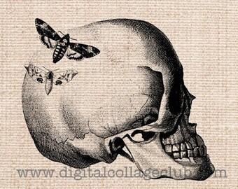 80% OFF Summer Sale Halloween Skull Clipart Clip Art Iron on Transfer fabric Transfer Digital Vintage Halloween Skull Images Halloween Art P