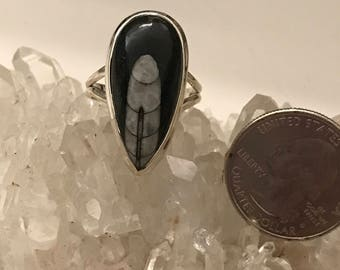 Orthoceras Fossil  Ring Size 10