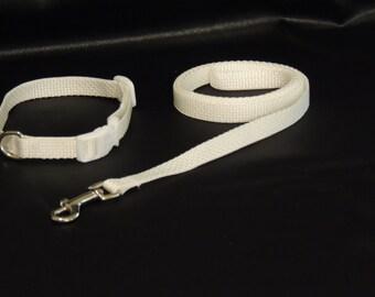 """Small Dog Wedding Collar 8-12"""" and Leash"""