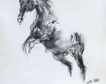 Charcoal Drawing of Horse on Paper, Equine Art, Animal, Modern Original Fine Art, Expressive Art