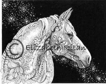 Stargazer Horse