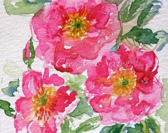 wild pink love roses watercolor - 8x10 giclee watercolour print - home decor fine art