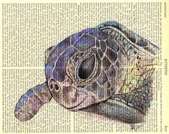 Sea Turtle Portrait~ Fine Art Print by D. Rosendahl