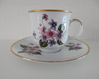 Bareuther Waldsassen Bavaria Germany Cup and saucer