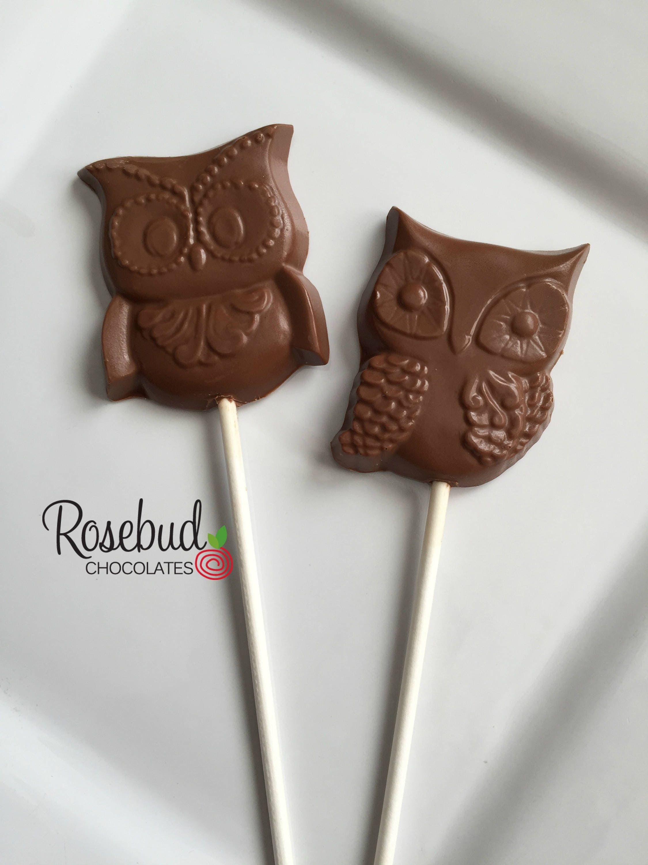 12 OWL Chocolate Lollipops Assorted Candy Party Favors Baby