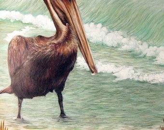 Pelican Print Ocean Shore Bird PRINT