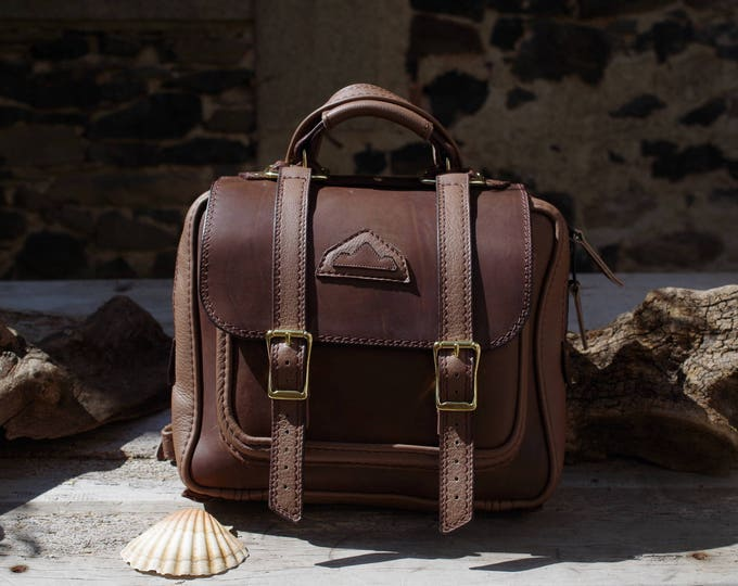 Briefcase, backpack, Brown/taupe /bronze leather Briefcase