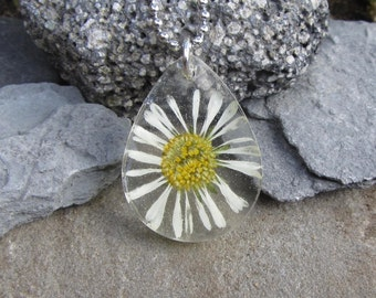 Real Flower Teardrop Daisy Necklace, Dried Flower Jewelry, Botanical Wearable Nature Necklace, Stainless Steel Chain, Unique Flower Gift