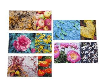 """Set of 5 cards of """"Nature"""" long printed fine art size 10 x 21 cm"""