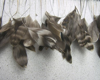 Stripped CHINCHILLA Rooster Feathers, Eyelash feathers