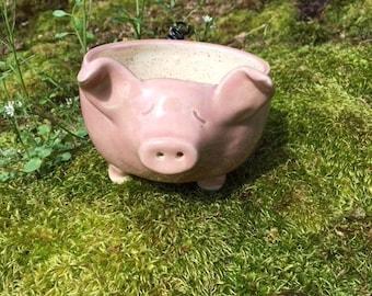 Pink Pig Garden Planter