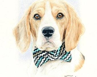 Greeting Card of Beagle Drawing
