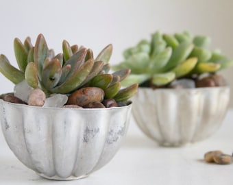 Tiny Succulent Planter, Rustic Aluminum, Upcycled Jello Molds, DIY Wedding Favor, Gift For Gardener, No Plant Included, For Mini Plants