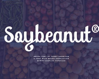50% Off Soybeanut - Brush Script Font