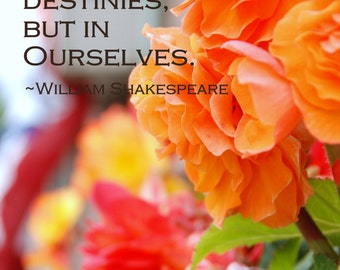 Digital Download Photography, Typography Art, Inspirational Quote, Literary Quote, Flower Photography, Shakespeare, Printable Art,