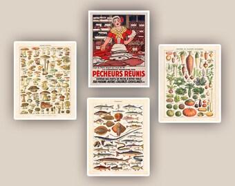 Kitchen art, kitchen decor, vegetables, mushrooms,fishes educational poster, fishes, seaweeds, fishwife, kitchen decor, fishmonger, 11x14