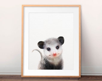 Nursery Wall Art, Opossum Print, Baby Animal Prints, Woodland Animal Print, Baby Animals, Woodland Nursery Decor, Kids Room Printable Art