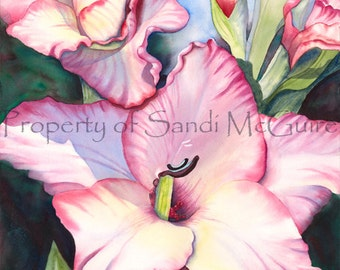 "Watercolor Print ""Gladiola"" by Sandi McGuire"