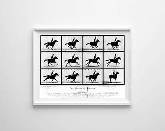 Large Horse in Motion Print - Kids Room Wall Art