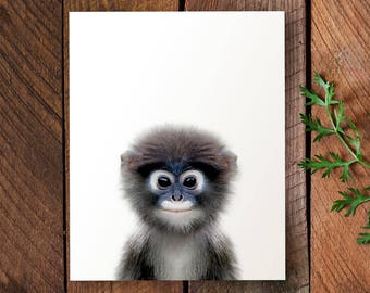 Monkey print, Nursery animal print, PRINTABLE monkey art, Safari nursery art, Nursery decor safari, The Crown Prints, Baby animal prints