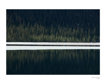 Reflection - Fine Art Photography, Colour Print, Nature, Trees, Repetition, Chaos, 18x24, Custom Sizes