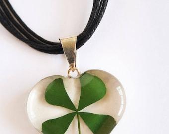 Real Four Leaf Clover Necklace