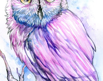 Pink and Blue Watercolor Owl Painting Art Print