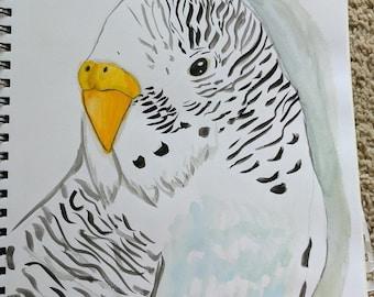 Blue and white parakeet PRINT