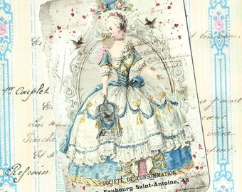 Tags, French Style, Gift Tags,  Marie Antoinette, Bird Cage, Party Favors