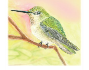 5x7 Giclee Print of Anna's Hummingbird
