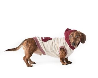 Dash Dog Hoodie