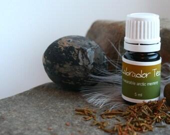 Labrador Tea - Tilaaqiaq - A wearable scent memory - artisan oil - sharp, bitter, evergreen, black tea, soil, herbal