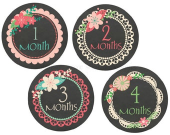 Baby Month Stickers Baby Stickers Baby Monthly Stickers Girl Baby Shower Gift Chalkboard Stickers