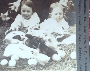 Stereoview Easter Chicks Bunnies Children Photograph Black & White Vintage Stereograph
