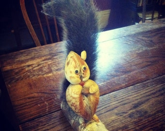 Squirrel Taxidermy Shell Art