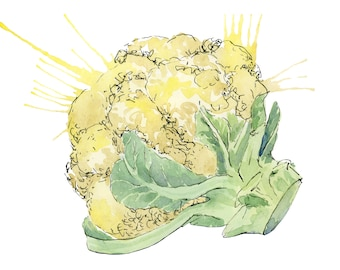 Cauliflower // Food Illustration // Art Print // Watercolor Painting // Kitchen Decor