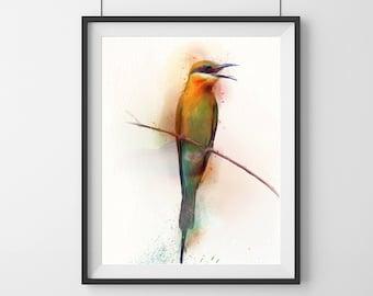 Watercolour Bird Print - Exotic - Bird Print - multicolored