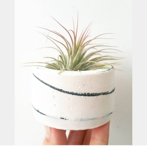 White Concrete Air Planter,Modern planter,Cactus Planter,Air Plant, Ring Dish,Desk Planter, candle holder,Plant lover, Mini Planter