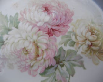 Floral Plate Germany