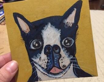 Birthday Surprise a Boston Terrier Letter & Original Mini Art
