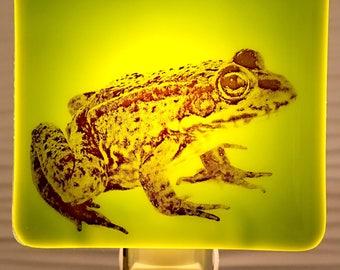 Frog Night Light Fused Glass