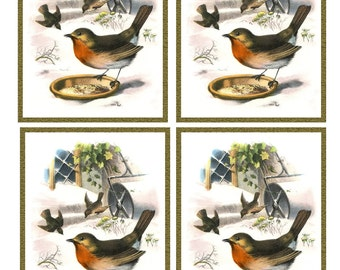 Vintage ROBIN BIRD in SNOW Framed Image Sheet - Digital Instant Download - winter nature avian songbird ephemera print collage supply