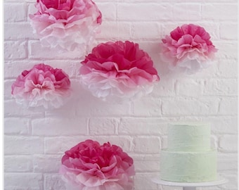 Party Decorations /Pink Ombre Tissue Paper Pom Poms