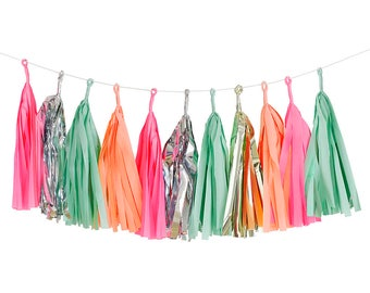 Pastel Tassel Party Garland Party Decoration - Girls Birthday Decor - Party decoration - Bunting -NK0228