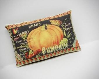 Fall pillow | Pillow Tuck | Fall Colors | Fall decoration | Pumpkin | Thanksgiving decoration | Thanksgiving centerpiece |  Pumpkin print