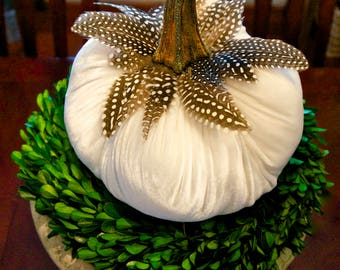 """8"""" Large Off White Velvet Pumpkins with Real Pumpkin Stems and Feathers"""