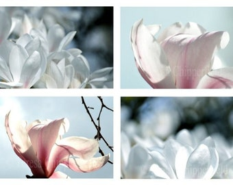 Magnolia Photography,Spring Flower Photo,Cottage Garden Image,Mothers Day,Set of 4,Beautiful Floral Art,Affordable Home Decor,4x6,8x12,16x24